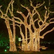 best way to hang christmas lights on tree hire a pro to hang up christmas lights angie s list