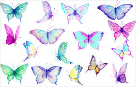 20 butterfly templates psd illustration vector designs