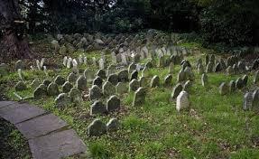 the pet cemetery of hyde park tripadvisor