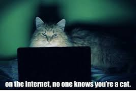 Internet Meme Cat - on the internet no one knows you re a cat internet meme on me me