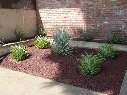 Lava Rock Garden Idea Lava Rock Landscaping Black Design Gardening Design