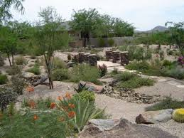A Stepping Stone Path Strolls Past Hearty Shrubs In This Large - Desert backyard designs