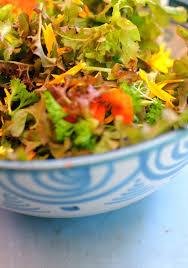 Salad With Edible Flowers - growing edible flowers top 10 plants with edible flowers
