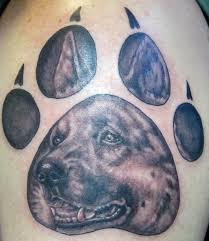 belgian sheepdog tattoo german shepherd tattoo in dogs paw tattoos pinterest german