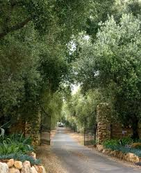 decorations driveway entrance ideas garden design with front
