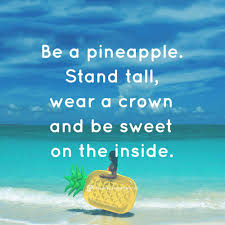quotes that express confidence who created the u0027be a pineapple u0027 quote u2013 the salty pineapple shop