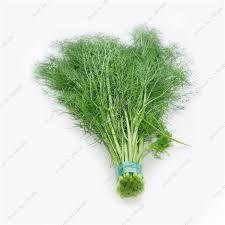 shop home garden fennel seeds organic graines