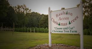 raulston acres christmas tree farm