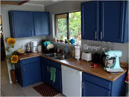 blue painted kitchen cabinet ideas cabinet home decorating