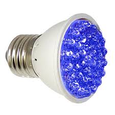 sunlight light bulbs for depression 13 skin conditions you can cure with blue light therapy sick journal