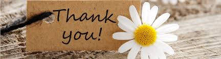thank you flowers your guide to the best thank you flowers floraqueen