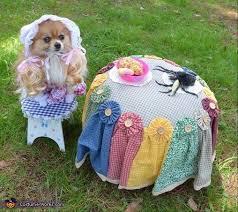 Winnie Pooh Dog Halloween Costume 29 Halloweeeeen Images Halloween Stuff
