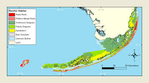 Map Of The Keys Florida by Florida Keys 2011 Condition Report