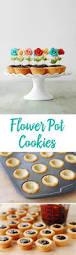 182 best cookies images on pinterest christmas cookies