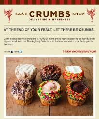 crumbs bake shop thanksgiving email promotion