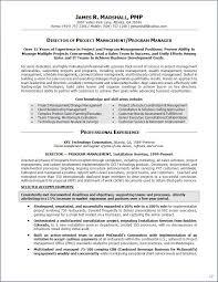 summary resume example sample resume executive summary resume samples executive summary resume samples business operations executive sample resume executive summary