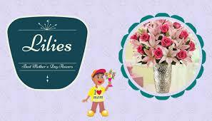 Send Flower Gifts - best mother u0027s day flowers gifts sendflowersandmore