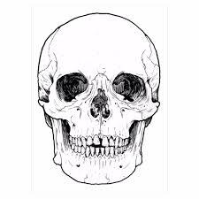Halloween Gifts Pinterest 1pc Fake Black Waterproof Tattoo Km 095 Skull Bone Head Decal