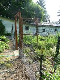 Deer Proof Fence For Vegetable Garden Grow It Eat It Good Fences Make Good Neighbors