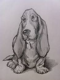 how to draw a basset hound dog feltmagnet