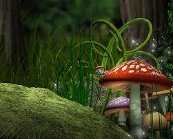 Mushroom Home Decor Fantasy Mushrooms Fantasy Mushrooms Artwork Mushrooms