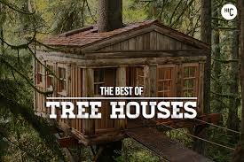 forever the 18 greatest tree houses for adults hiconsumption