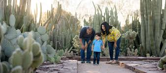 Scottsdale Az Botanical Gardens by Top 10 Things To Do With Kids Official Travel Site For