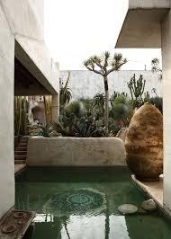 small pool with cacti garden desert home and garden outdoor