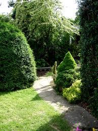 triyae com u003d backyard privacy ideas with plants various design
