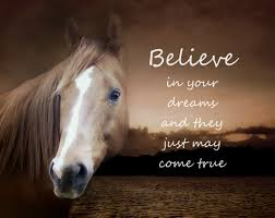believe horse print 11 x 14 inch photographic equine print with