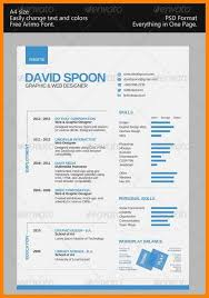 1 page resume example efficiencyexperts us
