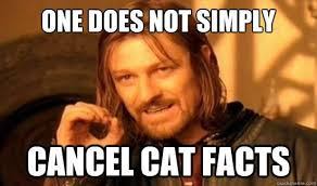 Cat Facts Meme - cat facts prank the best april fool s prank i ve ever pulled
