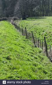 Fence Line Landscaping by House Garden Landscaping In Dry Climate Of Yavapai County Arizona