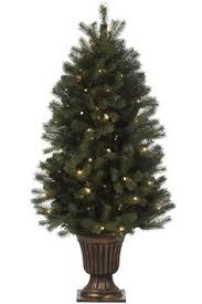 shop living 5 5 ft pre lit spruce artificial tree