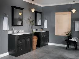 Gray Bathroom Paint Bathroom Awesome Picture Of Bathroom Decoration Using Single Dark