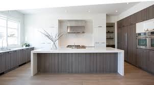 Urban Design Kitchens - aya kitchens of chicago sk kitchen design inc chicago kitchen