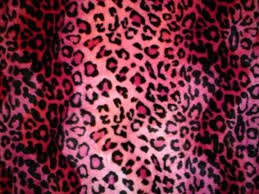 Pink Vs Wallpaper by Animal Print Pink Hello Kitty Wallpaper Pink Animal Print
