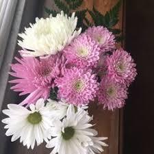 louisville florists schulz s florist 18 photos florists 947 eastern pkwy