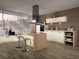 Exquisite Modern White Wood Kitchen Cabinets Fancy Design Of Home - Modern wood kitchen cabinets