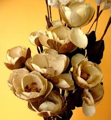 wood flowers italiani a fiji net shop online wooden flowers in fiji and the