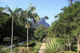 World Botanical Gardens 10 Best Botanical Gardens In The World 10 Most Today