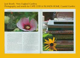 cape cod native plants garden inspiration cape cod home jane booth new england gardens