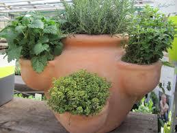 pflanzen fã r den balkon kräutergarten balkon ideen 03 00 34 egenis inspirierend