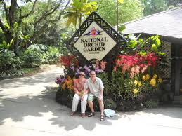 Botanical Gardens In Singapore by Two Beautiful Gardens Singapore And Kirstenbosch Botanical Gardens