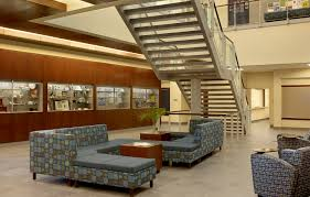 cool furniture for college good home design beautiful and