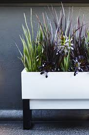 Buy Planters 157 Best Urban Gardening Images On Pinterest Urban Gardening