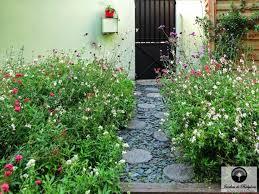 chambre d hote l ile rousse plante interieure fleurie pour chambre d hote ile rousse génial les