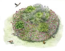 Herb Garden Winter - garden spaces grow an immune system strengthening herb garden