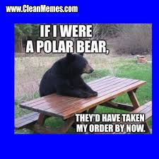 Polar Bear Meme - polar bear clean memes the best the most online