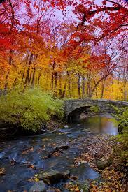 15 photos reveal the spectrum of autumn s colors